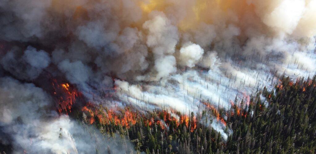 bosbrand in wyoming amerika