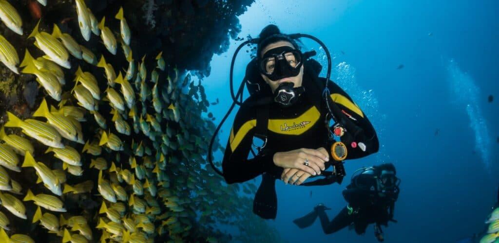 duikers in het water Rode Kruis